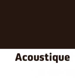 10 acoustique